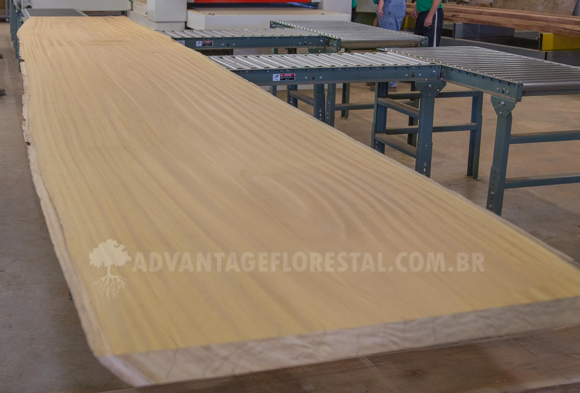 Tatajuba - Hardwood lumber products