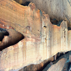 Cumaru Wood Slabs