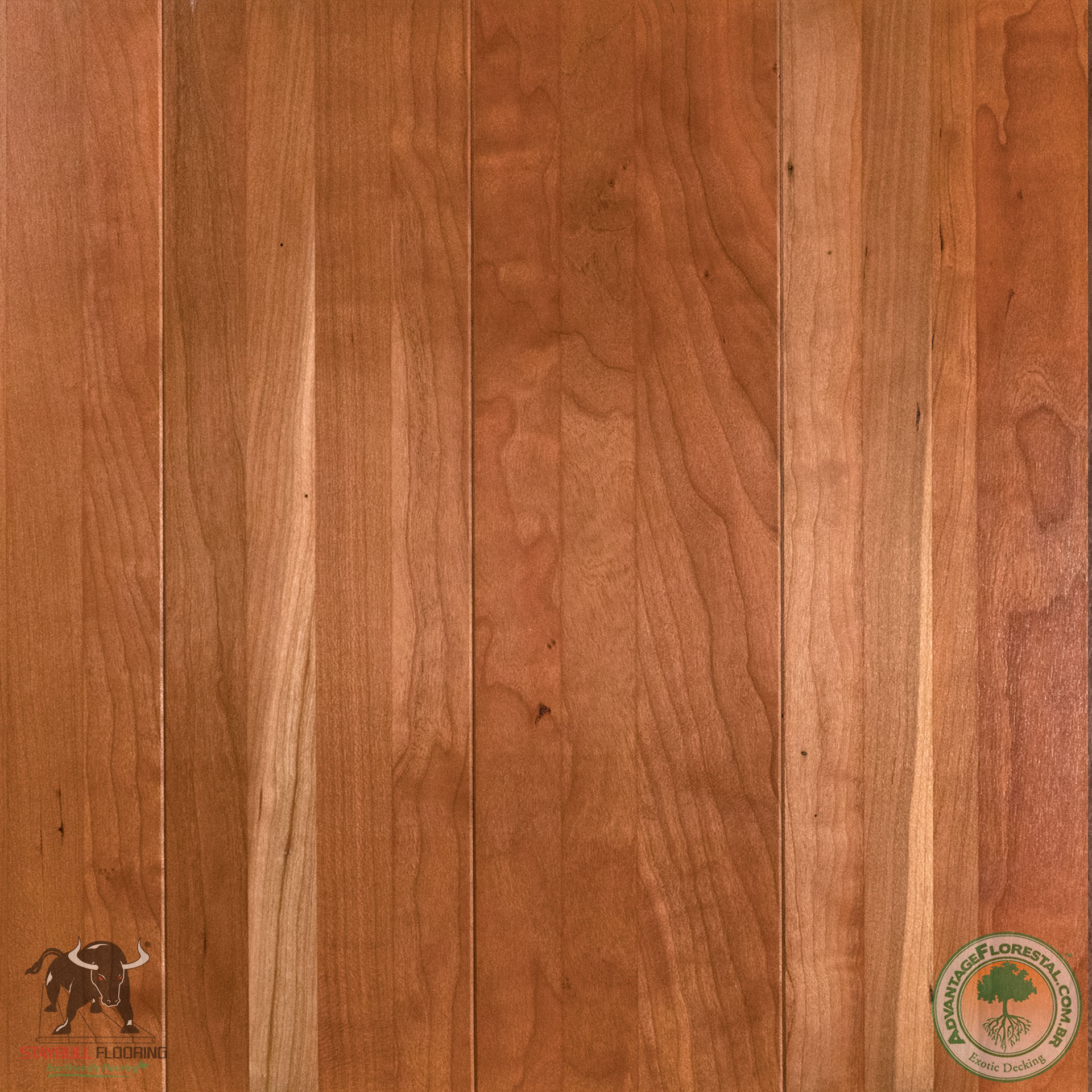 Wholesale StayBull Cherry Hardwood Flooring